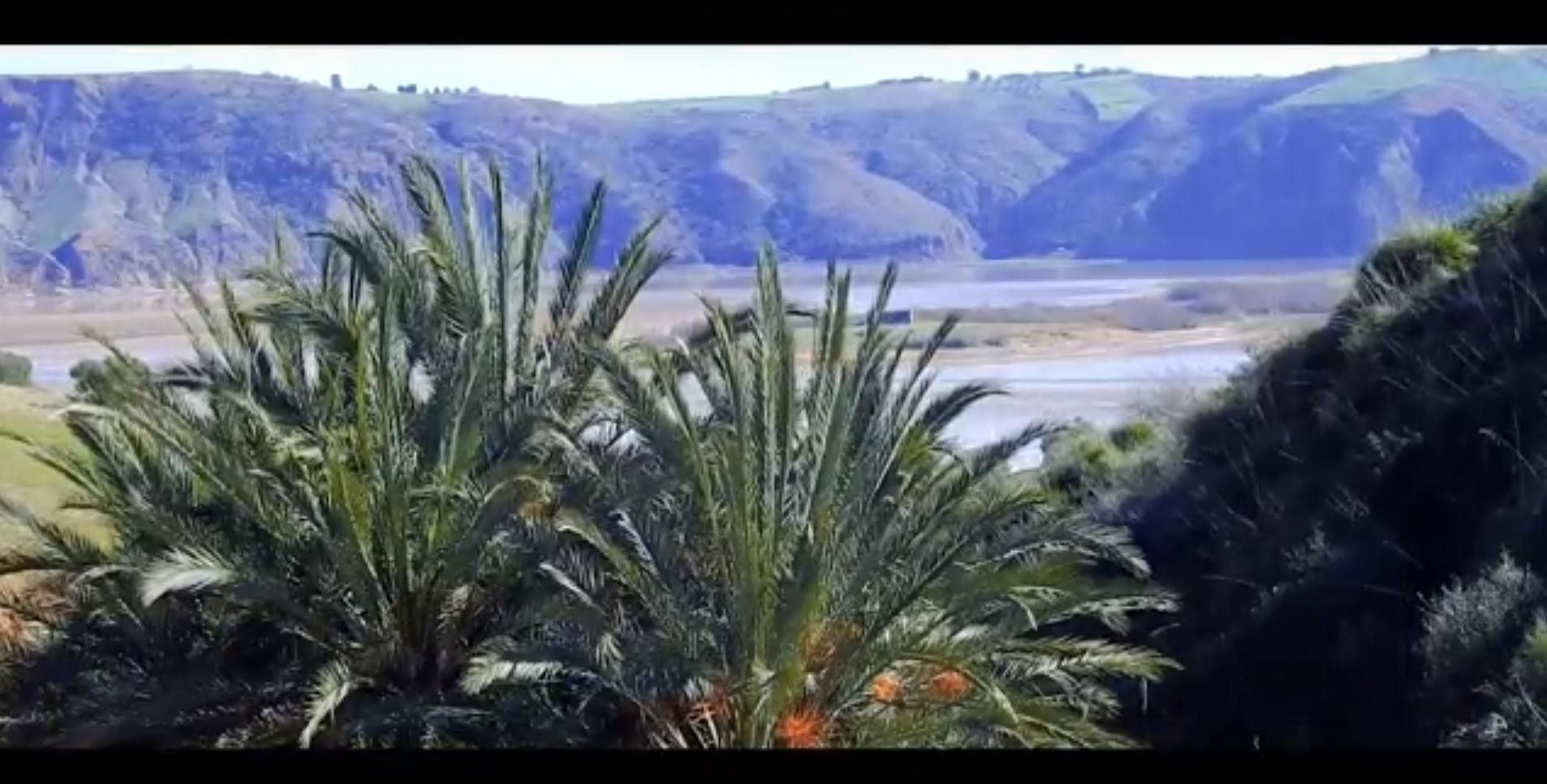 Les vidéos de la Réunion régionale de restitution actuellement disponibles en arabe, anglais et français